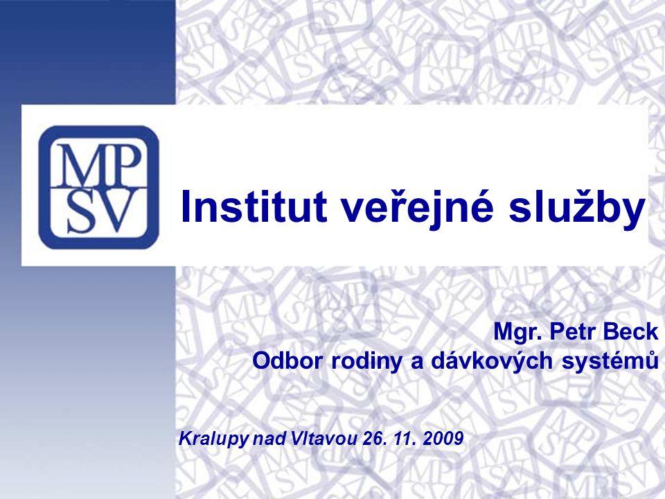 Institut veřejné služby