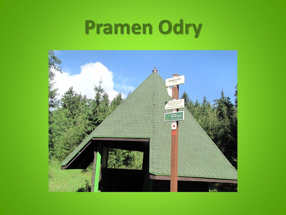 Pramen Odry