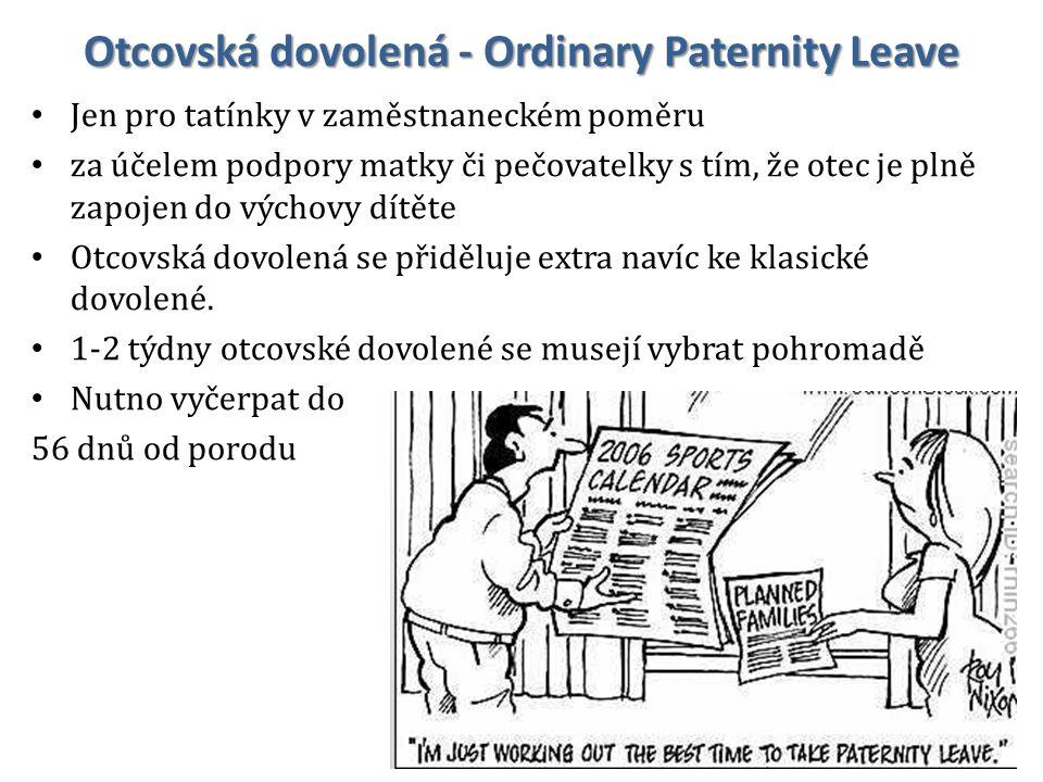 Otcovská dovolená - Ordinary Paternity Leave