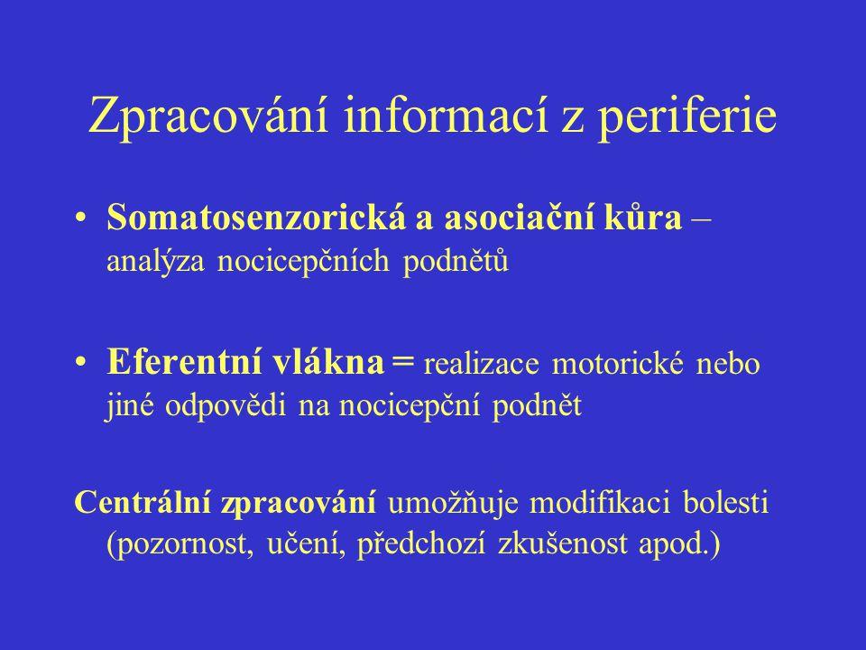 Zpracování informací z periferie