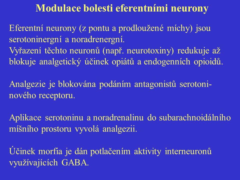 Modulace bolesti eferentními neurony