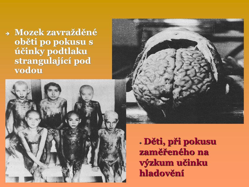 Mozek zavražděné oběti po pokusu s účinky podtlaku strangulající pod vodou