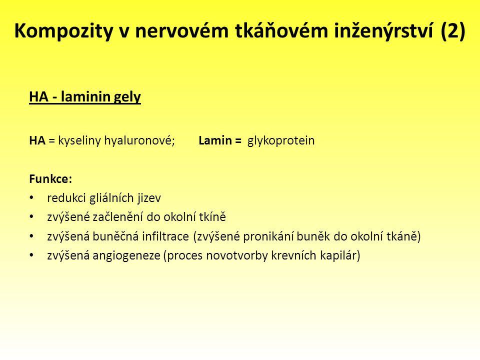 Kompozity v nervovém tkáňovém inženýrství (2)