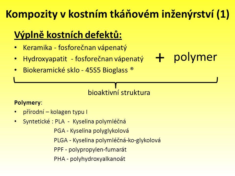 Kompozity v kostním tkáňovém inženýrství (1)