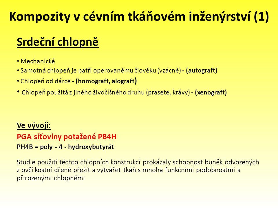 Kompozity v cévním tkáňovém inženýrství (1)