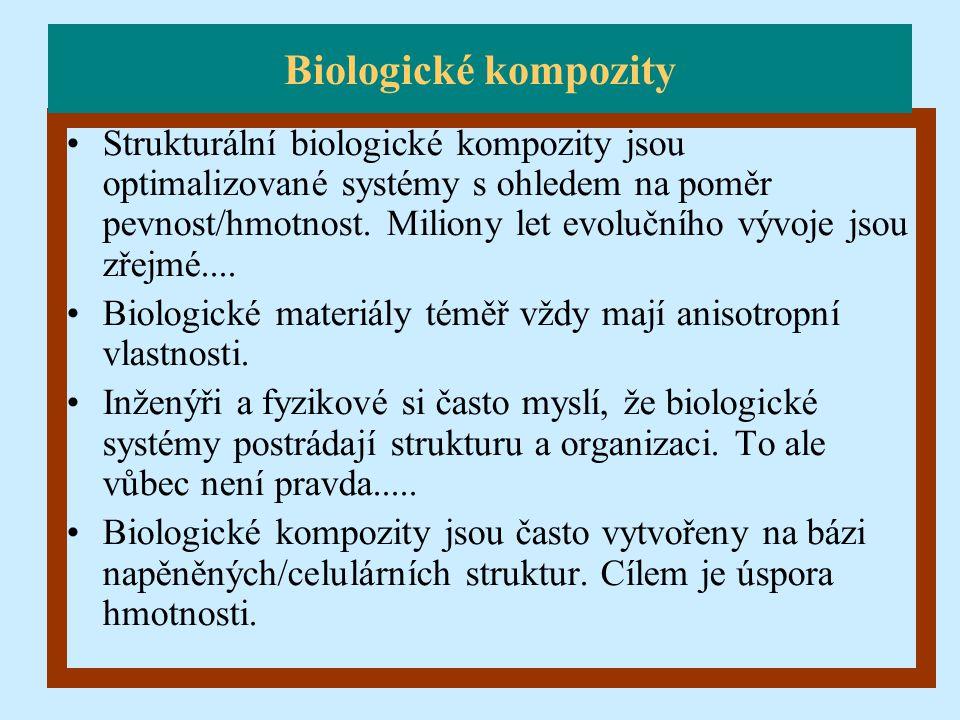 Biologické kompozity