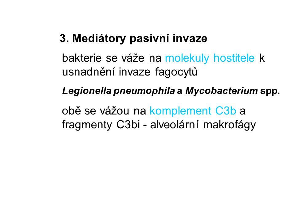 3. Mediátory pasivní invaze