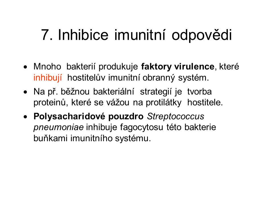 7. Inhibice imunitní odpovědi