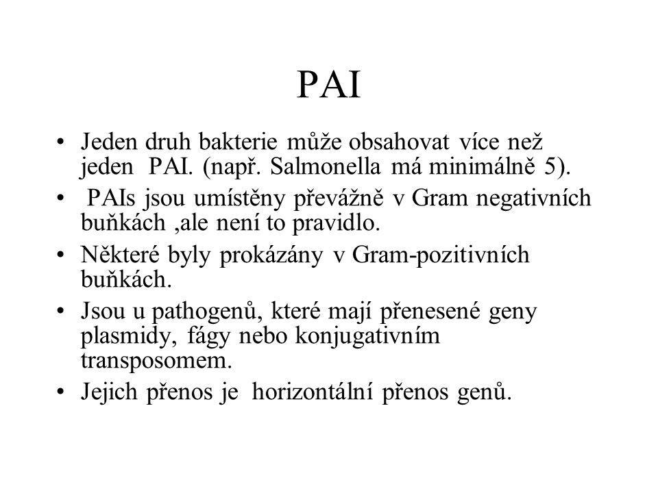 PAI Jeden druh bakterie může obsahovat více než jeden PAI. (např. Salmonella má minimálně 5).
