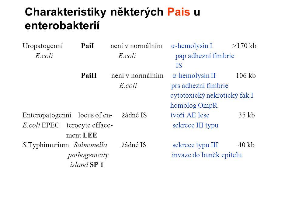 Charakteristiky některých Pais u enterobakterií