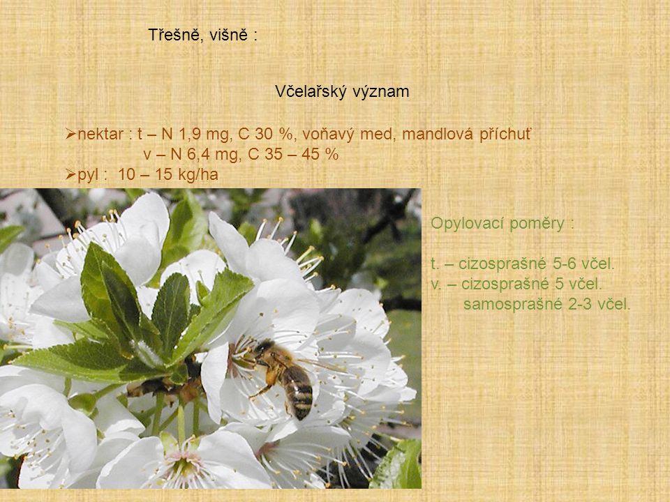 Třešně, višně : Včelařský význam. nektar : t – N 1,9 mg, C 30 %, voňavý med, mandlová příchuť. v – N 6,4 mg, C 35 – 45 %