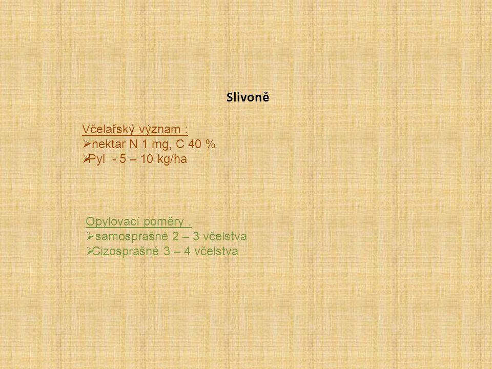 Slivoně Včelařský význam : nektar N 1 mg, C 40 % Pyl - 5 – 10 kg/ha