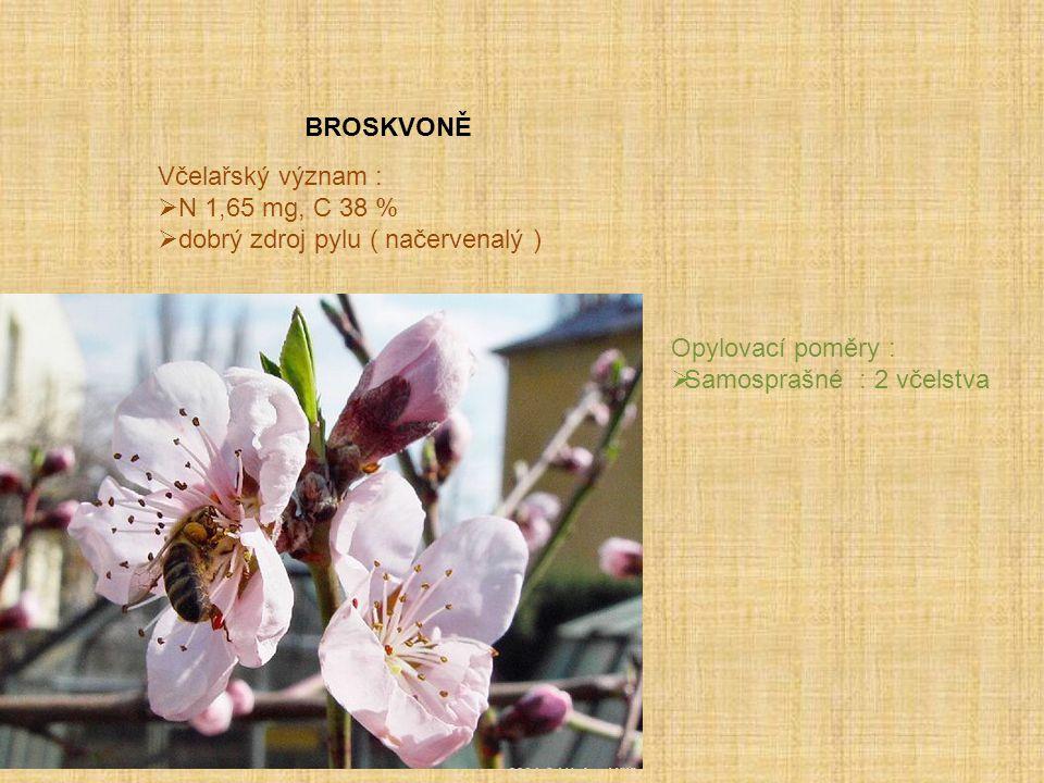 BROSKVONĚ Včelařský význam : N 1,65 mg, C 38 % dobrý zdroj pylu ( načervenalý ) Opylovací poměry :