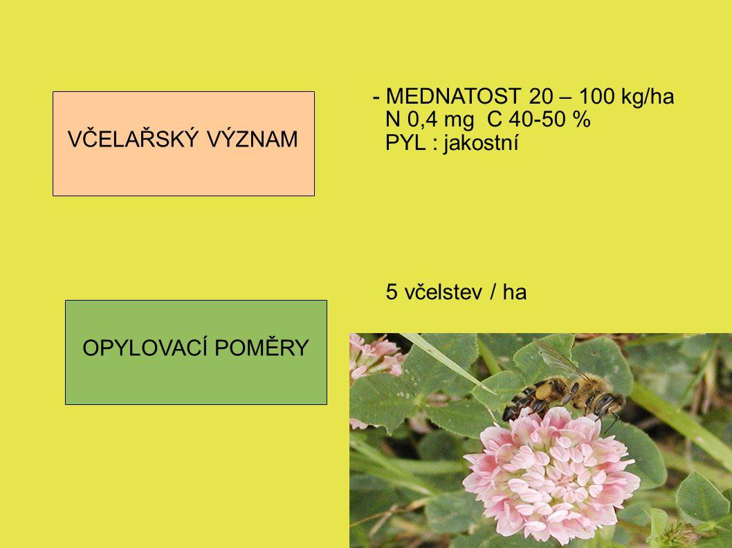VČELAŘSKÝ VÝZNAM - MEDNATOST 20 – 100 kg/ha. N 0,4 mg C 40-50 % PYL : jakostní. 5 včelstev / ha.