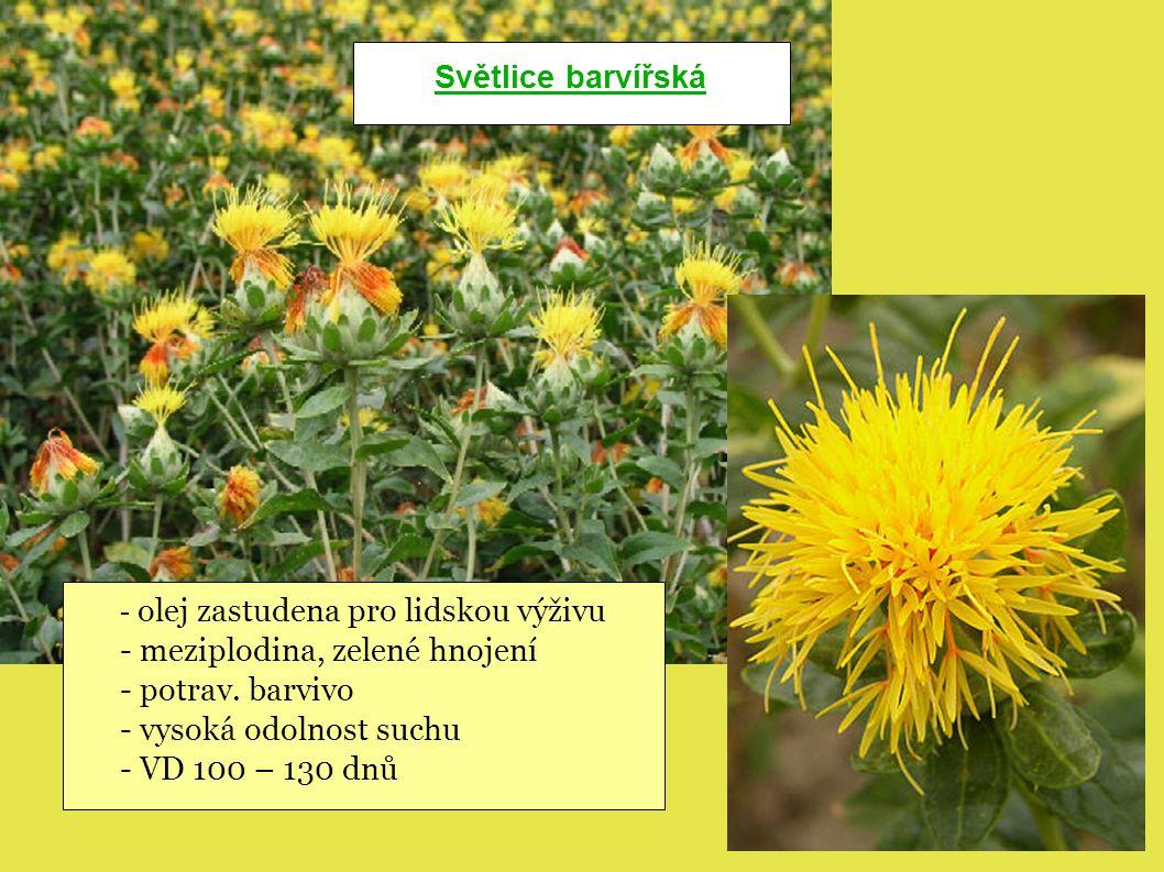 - meziplodina, zelené hnojení - potrav. barvivo