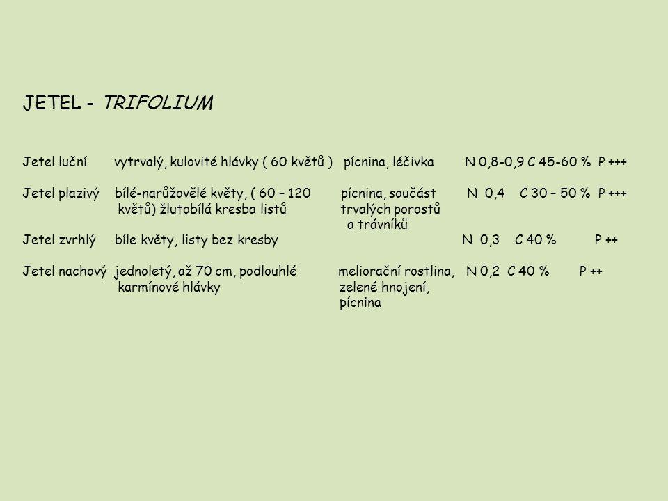 JETEL - TRIFOLIUM Jetel luční vytrvalý, kulovité hlávky ( 60 květů ) pícnina, léčivka N 0,8-0,9 C 45-60 % P +++
