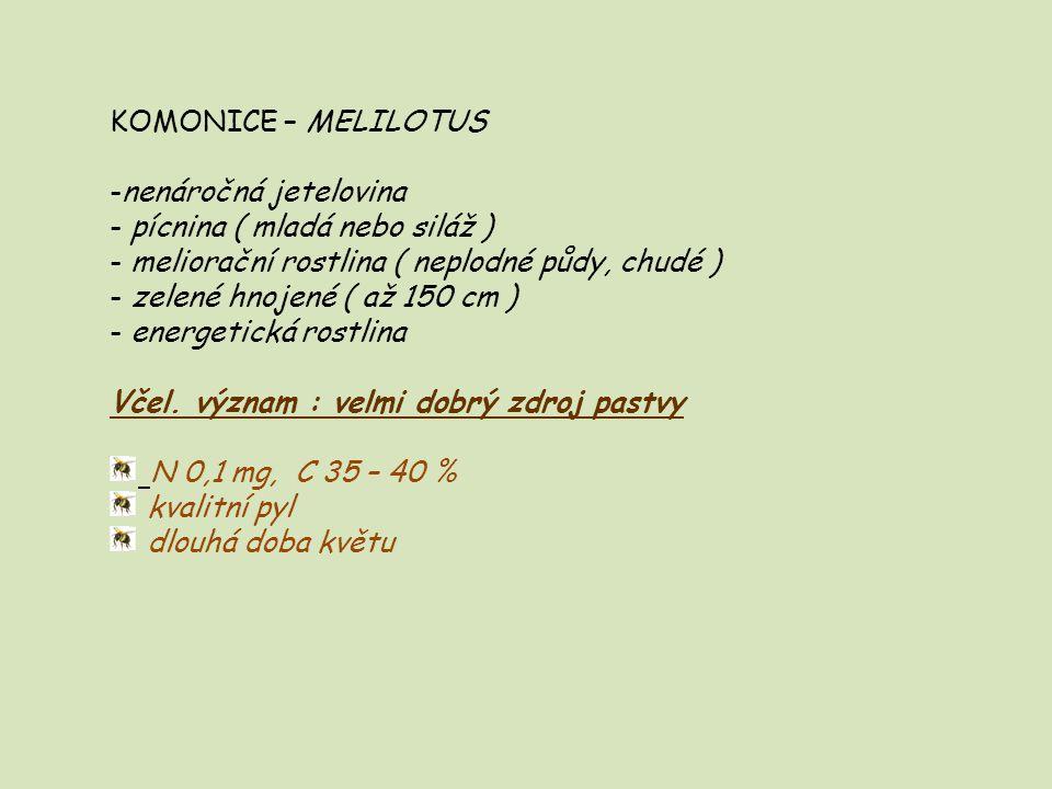 KOMONICE – MELILOTUS nenáročná jetelovina. pícnina ( mladá nebo siláž ) meliorační rostlina ( neplodné půdy, chudé )