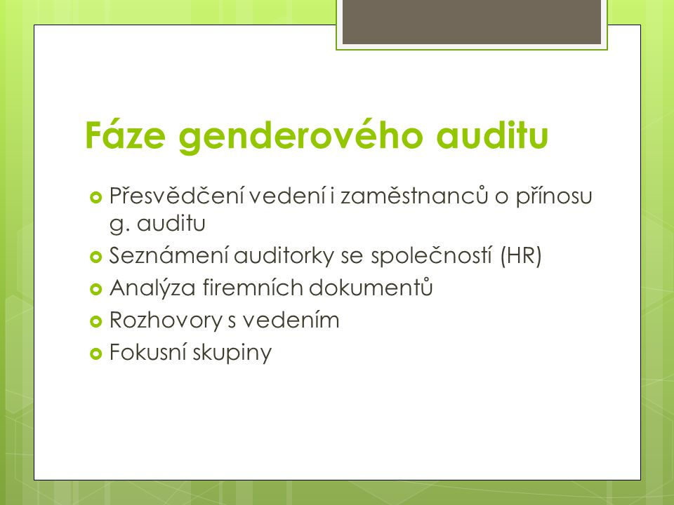 Fáze genderového auditu