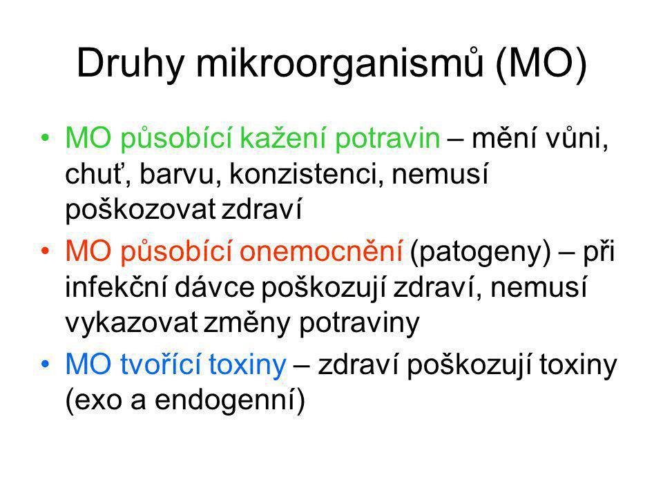 Druhy mikroorganismů (MO)