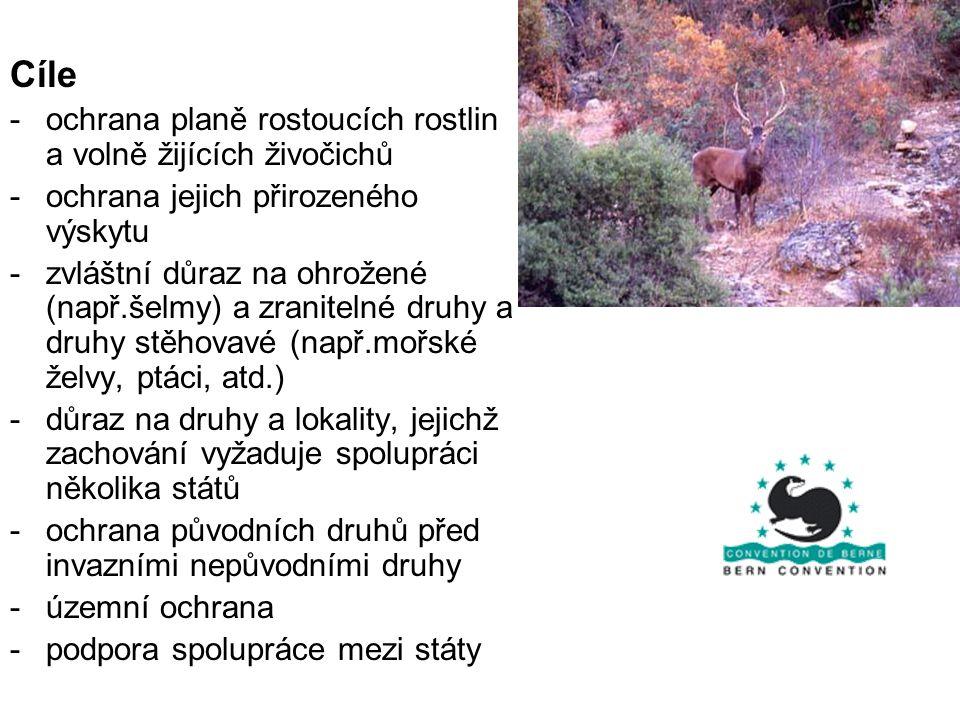 Cíle ochrana planě rostoucích rostlin a volně žijících živočichů
