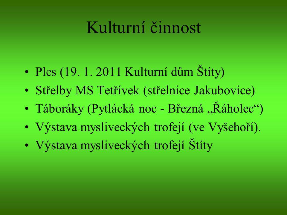 Kulturní činnost Ples (19. 1. 2011 Kulturní dům Štíty)