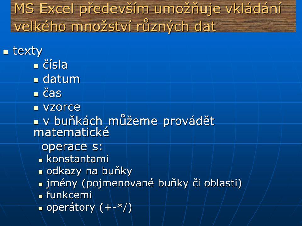 MS Excel především umožňuje vkládání velkého množství různých dat