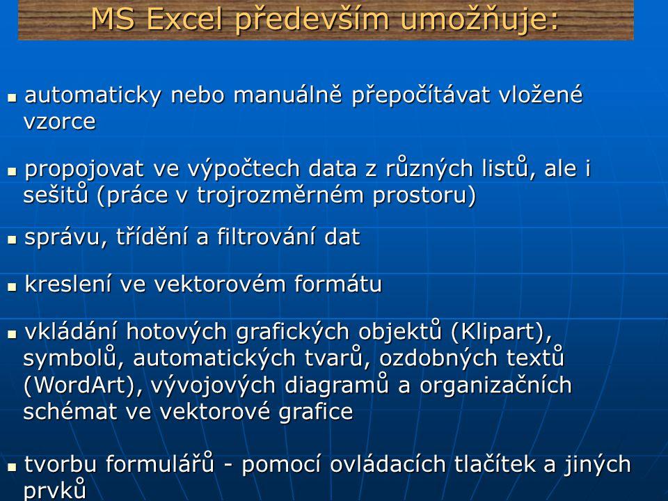MS Excel především umožňuje: