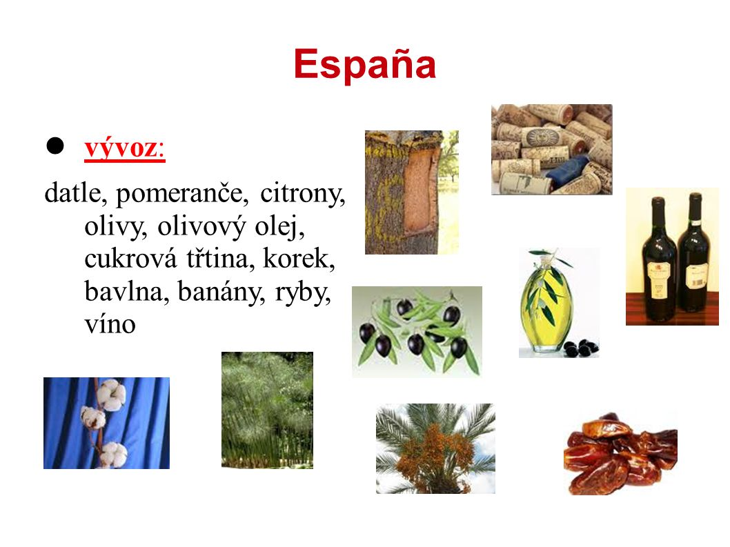 España vývoz: datle, pomeranče, citrony, olivy, olivový olej, cukrová třtina, korek, bavlna, banány, ryby, víno.