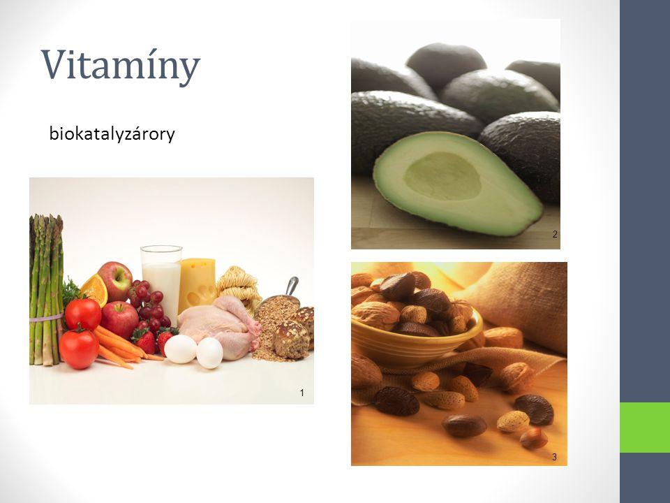 Vitamíny biokatalyzárory 2 1 3