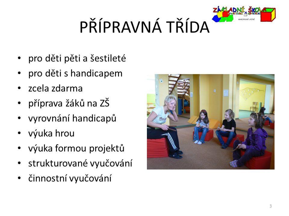 PŘÍPRAVNÁ TŘÍDA pro děti pěti a šestileté pro děti s handicapem