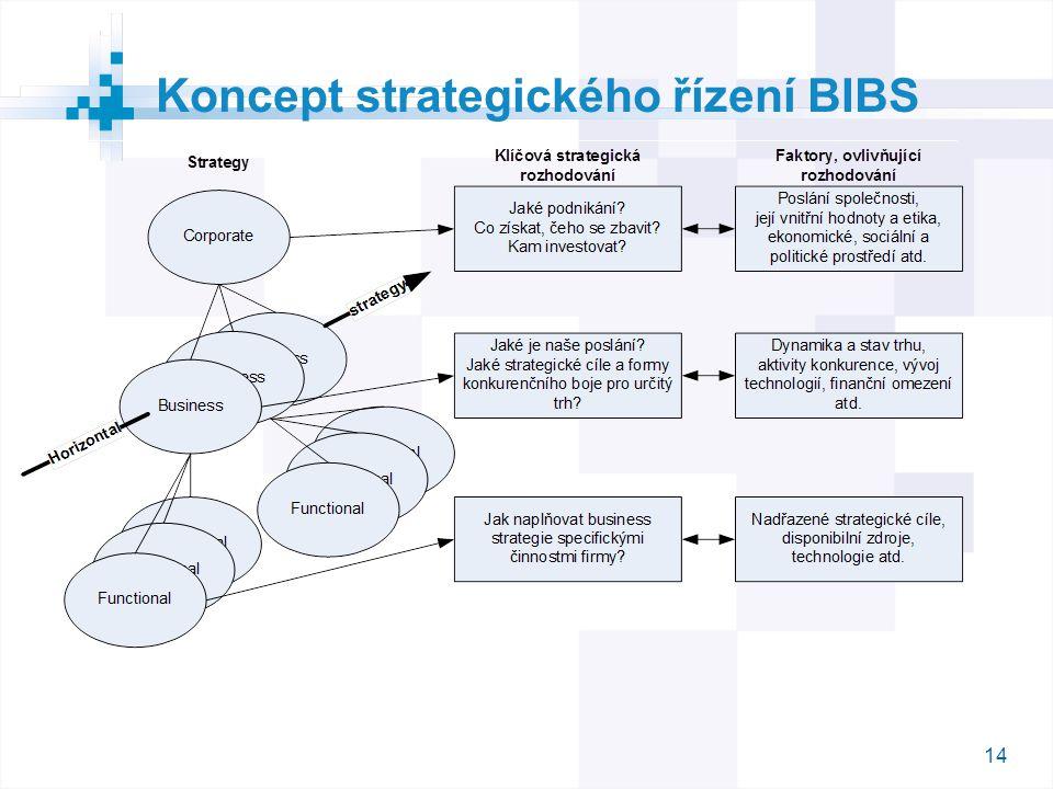 Koncept strategického řízení BIBS