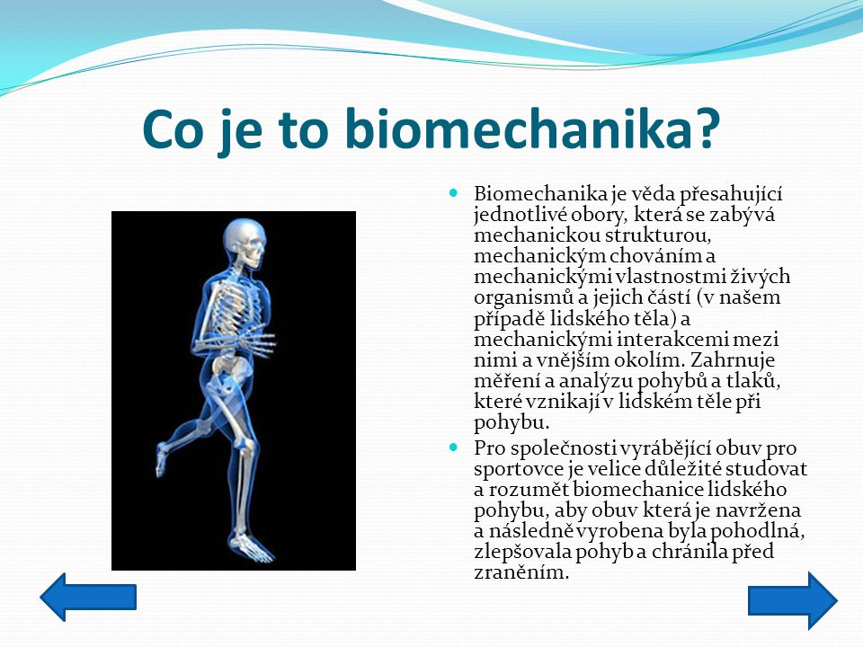 Co je to biomechanika