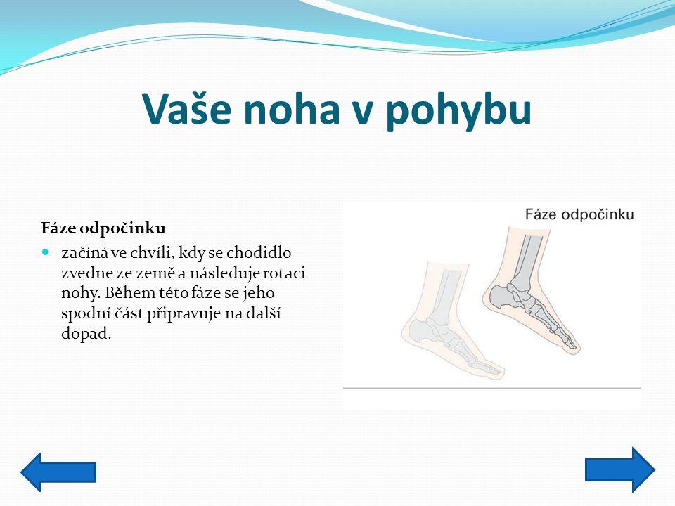Vaše noha v pohybu Fáze odpočinku