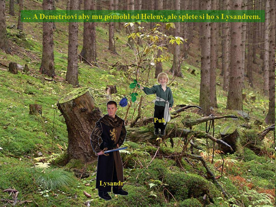 … A Demetriovi aby mu pomohl od Heleny, ale splete si ho s Lysandrem.