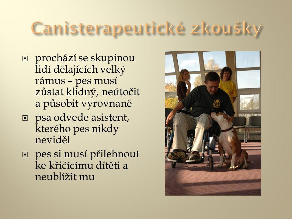 Canisterapeutické zkoušky
