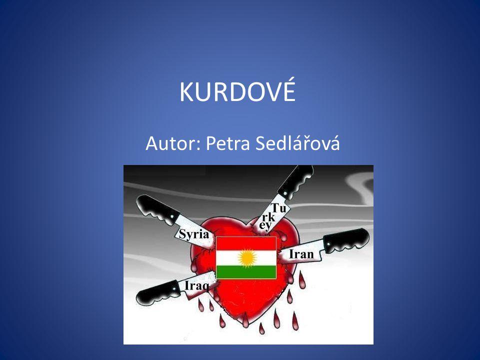 Autor: Petra Sedlářová