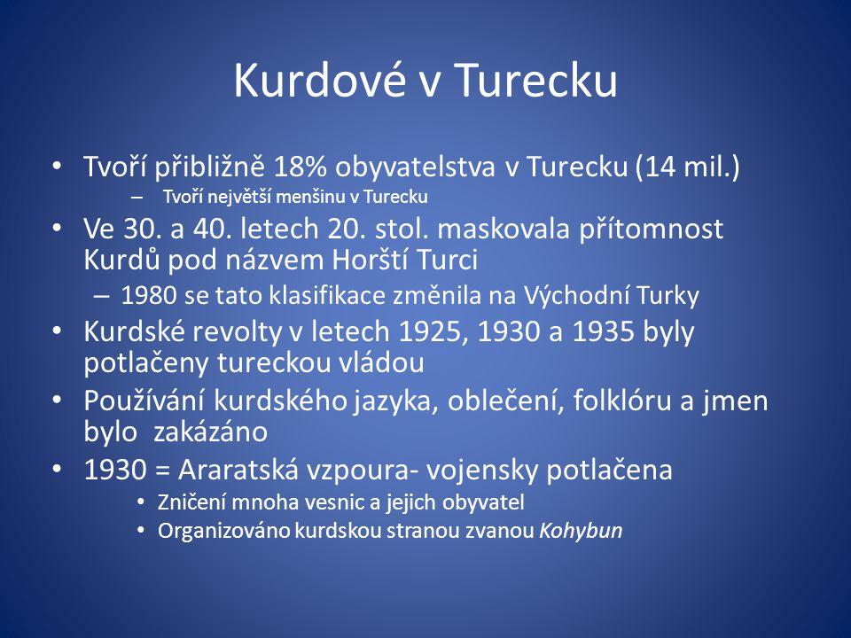 Kurdové v Turecku Tvoří přibližně 18% obyvatelstva v Turecku (14 mil.)