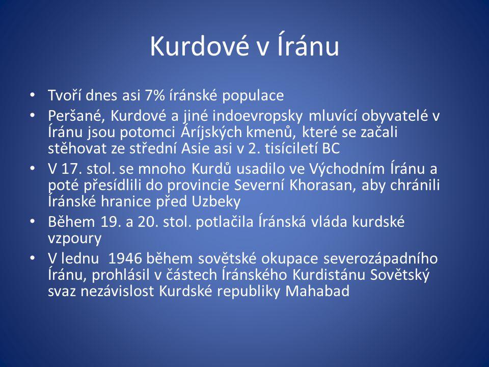 Kurdové v Íránu Tvoří dnes asi 7% íránské populace