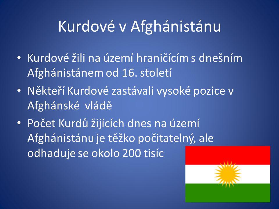 Kurdové v Afghánistánu