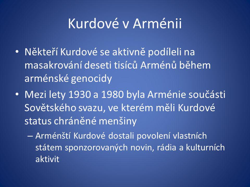 Kurdové v Arménii Někteří Kurdové se aktivně podíleli na masakrování deseti tisíců Arménů během arménské genocidy.