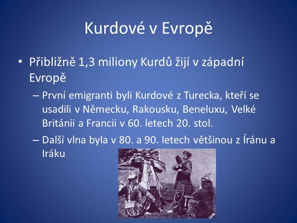 Kurdové v Evropě Přibližně 1,3 miliony Kurdů žijí v západní Evropě