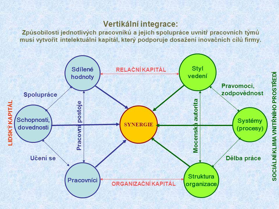 Vertikální integrace: Způsobilosti jednotlivých pracovníků a jejich spolupráce uvnitř pracovních týmů musí vytvořit intelektuální kapitál, který podporuje dosažení inovačních cílů firmy.