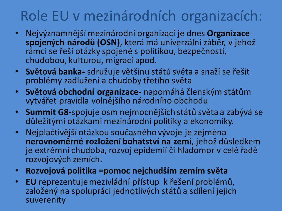 Role EU v mezinárodních organizacích: