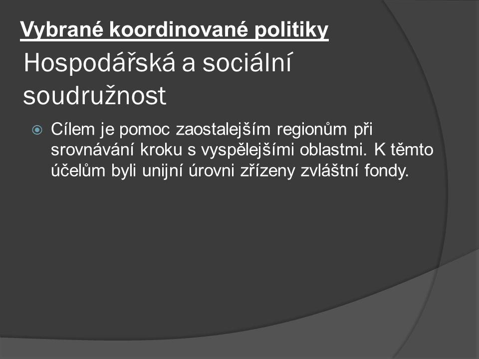 Hospodářská a sociální soudružnost