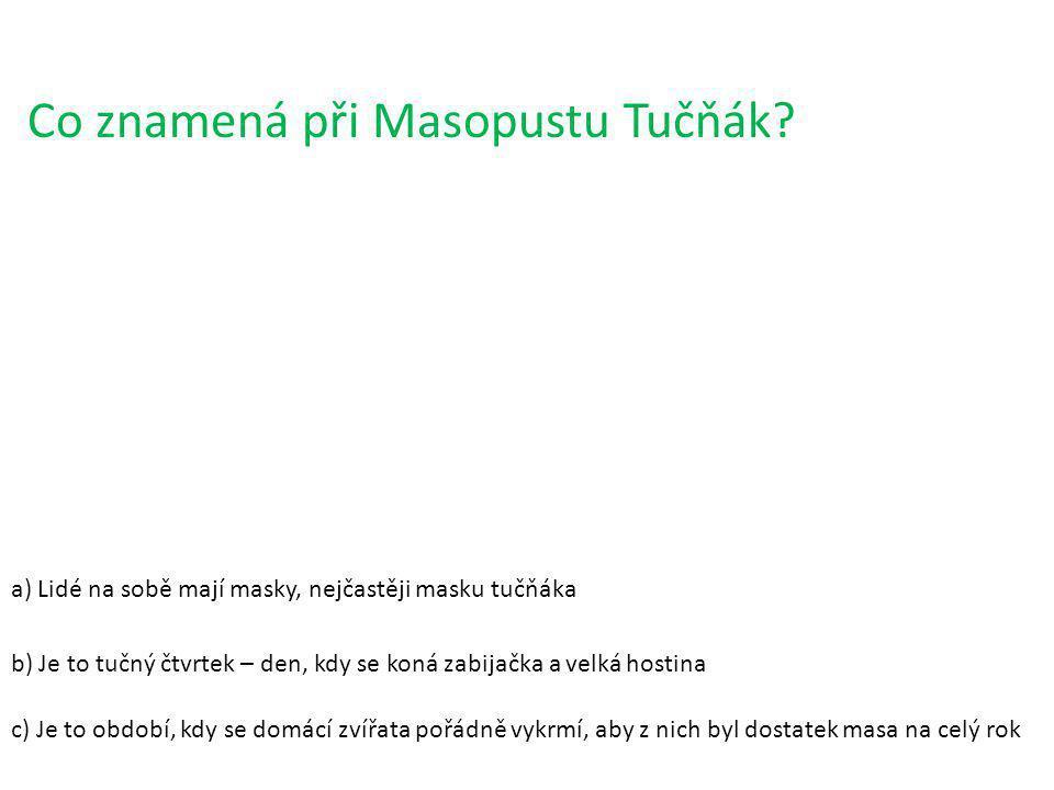 Co znamená při Masopustu Tučňák