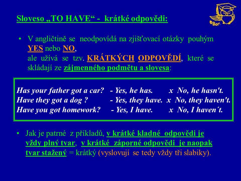 """Sloveso """"TO HAVE - krátké odpovědi:"""