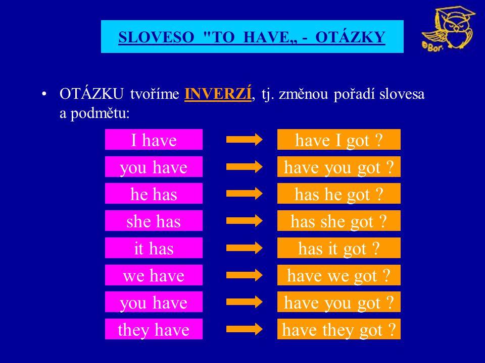 "SLOVESO TO HAVE"" - OTÁZKY"