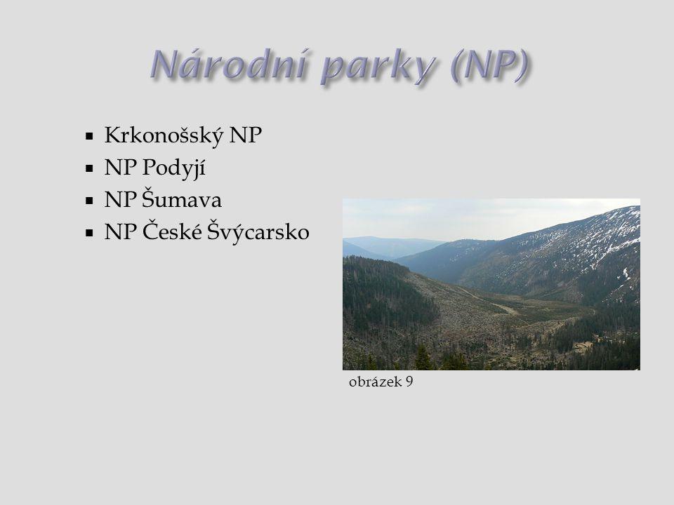 Národní parky (NP) Krkonošský NP NP Podyjí NP Šumava