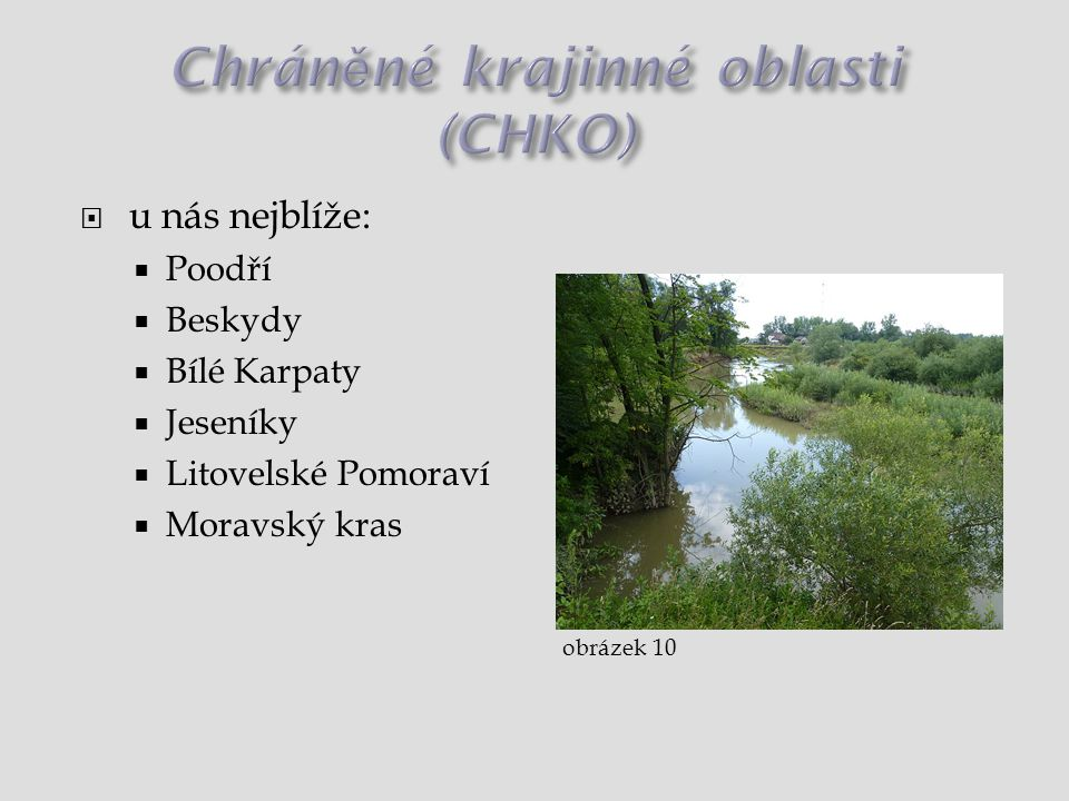 Chráněné krajinné oblasti (CHKO)