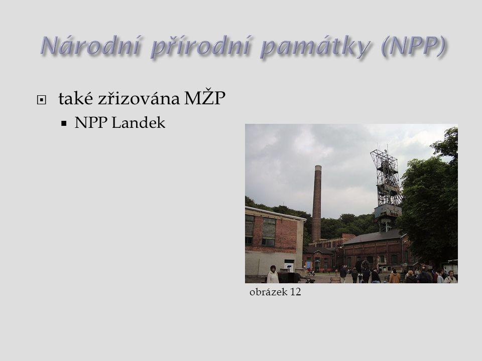 Národní přírodní památky (NPP)
